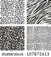 pattern of animal print,  vector illustration - stock vector