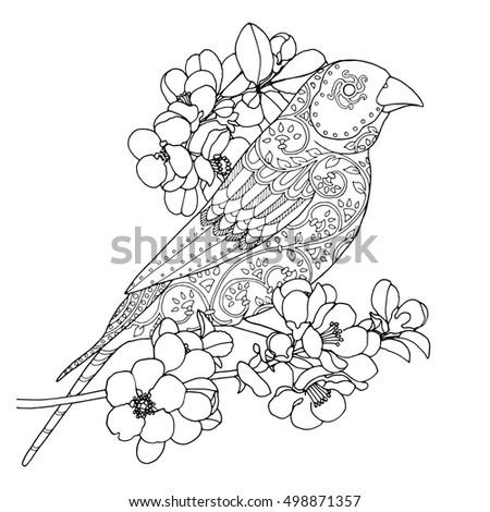Women's Dress Patterns also 183381016052621107 likewise Thank You Stick Figures additionally Singing Bird Patterned Nightingale Marigold Flowers 488426821 likewise Getzhanga blogspot co. on little circle skirt