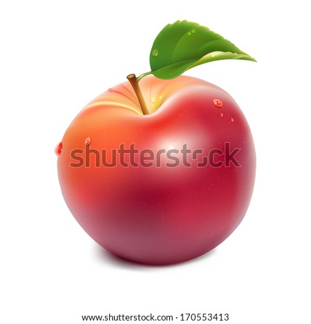 Photo-realistic vector illustration of red apple with green leaf and water drops. Illustration contains gradient mesh.