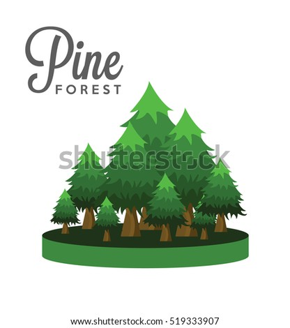 Pine tree forest 2