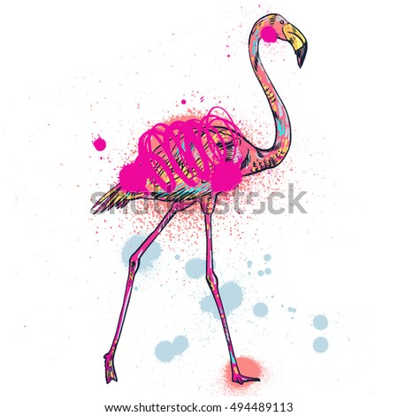 Pink flamingo vector illustration isolated