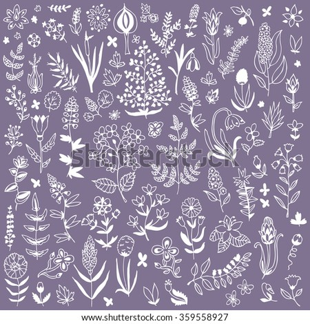 Plants and flowers set. Endless texture for wallpaper, fill, web page background, surface texture.