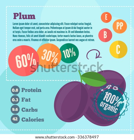 Plum infographics with vitamins in flat style. Vector illustration of organic food for markets and shops. EPS 10