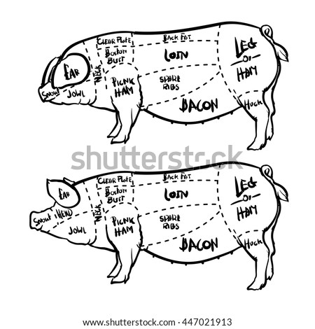 Cut Meat Set Hand Drawn Pig Stock Vector 445962784