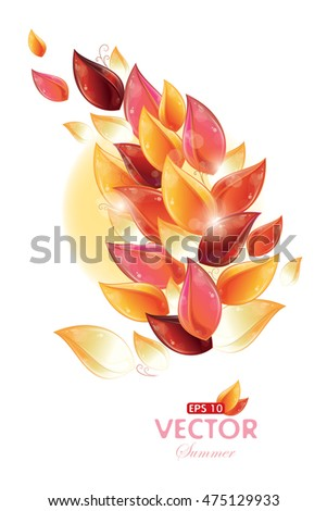 Postcard - Rose petal design, vector illustration, eps-10