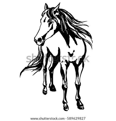 Vector Mustang Gallop Stock Vector 550434355 - Shutterstock