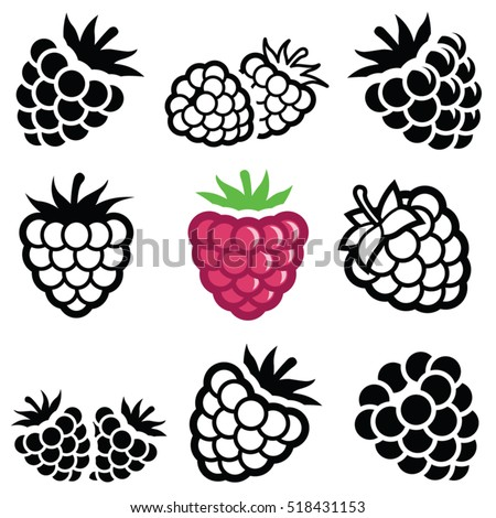 Raspberry fruit icon collection - vector outline and silhouette