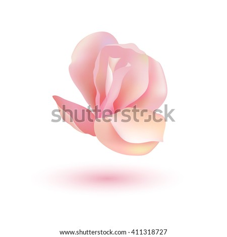 Realistic flower. Isolated on white.