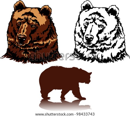 Realistic Vector image of a head of brown bears (grizzlies)