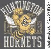 "retro ""hornets"" athletic design ..."