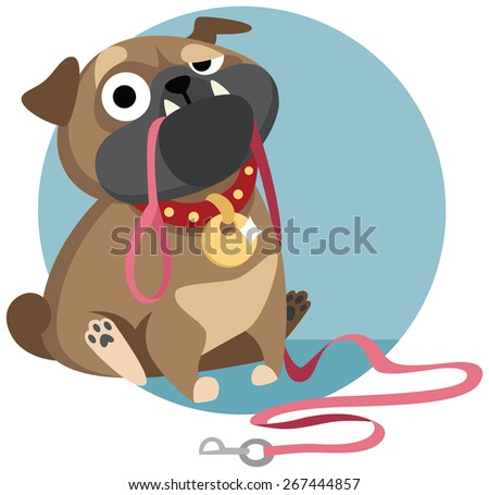 sad pug puppy sitting with dog-lead in it's mouth and asking for a walk. Cartoon character. Vector illustration. Flat character design.