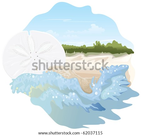 Blue sand dollar illustration - photo#12