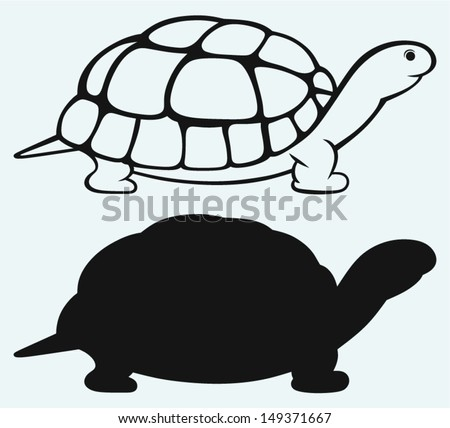 Sea turtle isolated on blue background