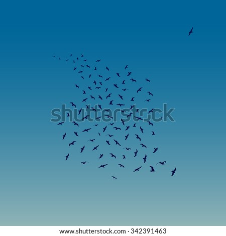 Seagulls Flying as night falls. Vector illustration of Flying Seagulls. Silouettes, illustrator 8, global colors, easily editable.
