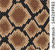 Seamless background snakeskin pattern showing scale detail with a geometric diamond formation in shades of brown, square format. Jpeg version also available in gallery - stock vector