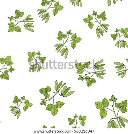 Seamless pattern with soybean. Vector illustration
