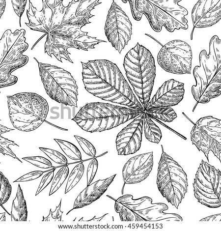 Seamless Pattern Autumn Leaves Chestnut Leaf Stock