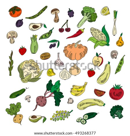 Set colors elements vegetables and fruits. Vegetarian food.