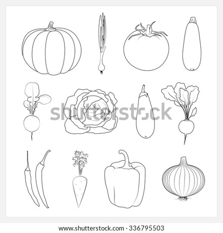 Set Linear Vegetable Icons ,Pumpkin,Green Onion,Tomatoes, Zucchini  Courgette ,Radish, Cabbage,Eggplant, Beet, Hot Chili Pepper,  Carrots, Onion, Sweet Pepper,Isolated Vector Illustration