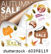 Set of autumn discount tickets, labels, stamps, stickers, corners, tags (vector) - stock vector