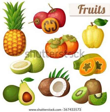 pomelo fruit cartoon vector icon isolated stock vector