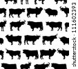 Set of cows - stock vector