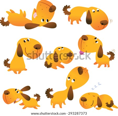 Set of dog isolated on white background