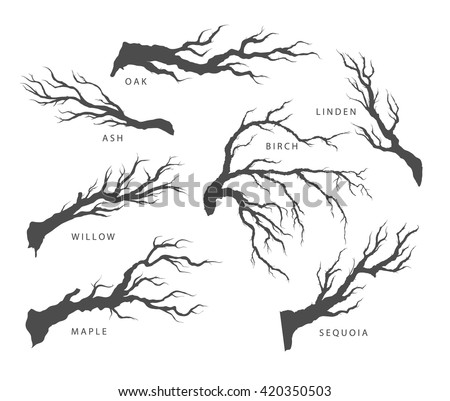 Search in addition Tree silhouette also Search likewise Beautiful Nature Wallpapers World Hitrees furthermore 134756213824262057. on scary forest landscape