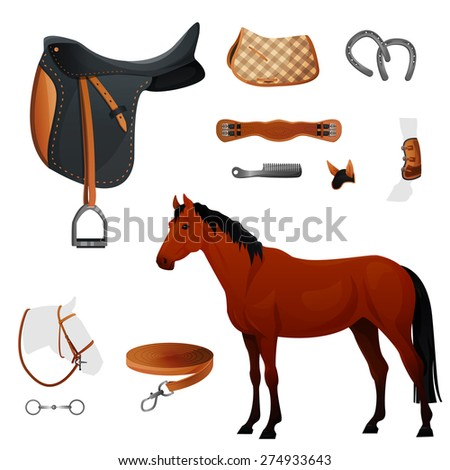 horse accecories