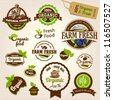 Set of Fresh Organic Labels and Elements - stock photo