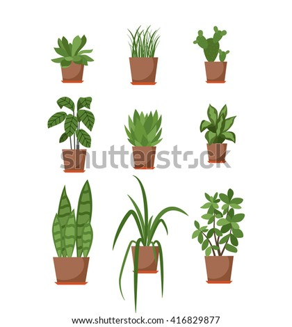 Set house plant isolated vector flat stock vector 406975759 shutterstock - Colorful indoor plants ...