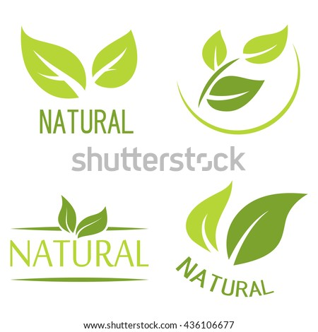 Set of labels, logos with text. Natural, eco food. Organic food badges in vector (cosmetic, food). Vector logos. Natural logos with leaves.