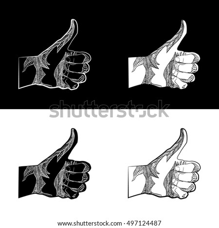 Set of Like, vector illustration. Sketch. hand drawn. Human hand giving ok. On black and white background.