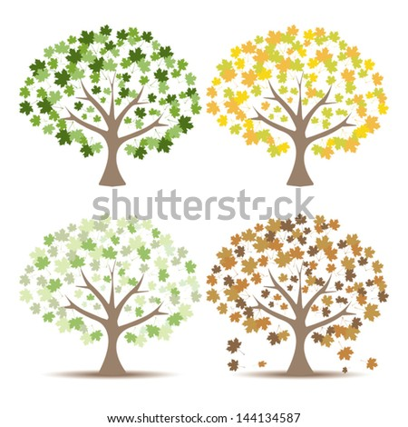 Set of Maple Trees Vector Illustration.