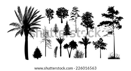 Set of silhouettes of trees on a white background. Vector