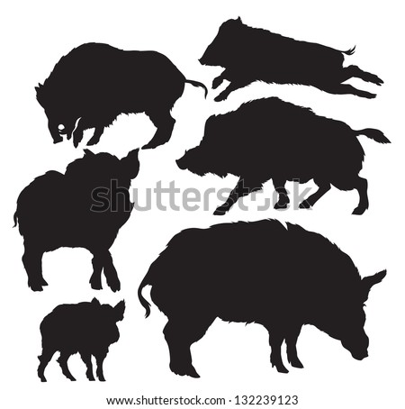 set of silhouettes of wild boar