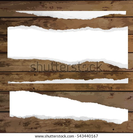 Set of various white torn note papers. Vector illustration.
