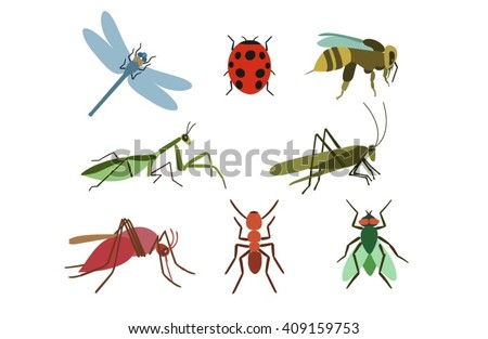 Set of vector insects. Insects colorful set. Insect Collection  of gnat, ant, fly, bee, mosquito, dragonfly, beetle, ladybug,mantis,grasshopper. Insect isolated on white background. Insect cartoon set