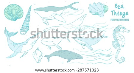 set of whales and marine animals on a white background in the style of a pencil. Hand Drawn Illustrations of Humpback and Sperm Whales.