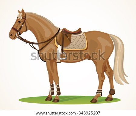 Western Horse With Saddle And Bridle Stock Vector