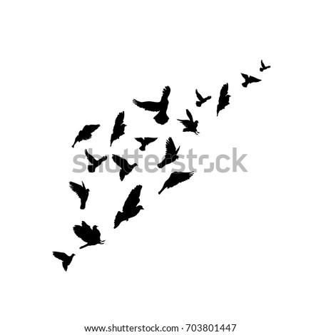 Flock Flying Birds Starlings Vector 532028611
