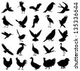 Silhouettes of birds vector icons set. - stock vector