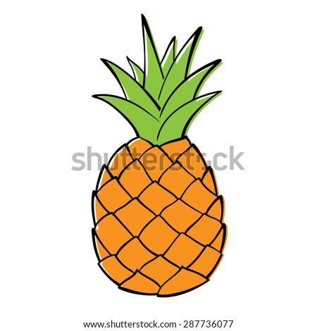 outline black white image pineapple vector stock vector