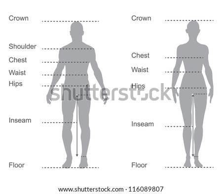 ... of male and female body measurements for clothing - stock vector