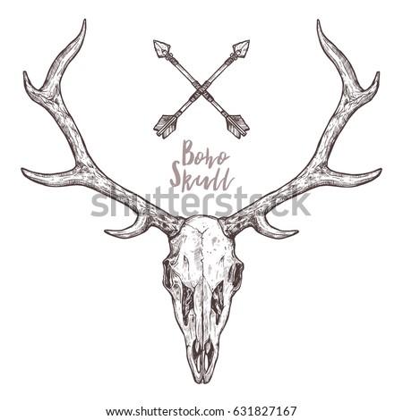 10952639 together with Rebel Flag Coloring Ek1bRhv9bNco290hkOEI5QO2hFrVhmhwXnyuMGH4TA4 moreover Simple Design Of Bear Face Tattoo moreover Deer Skull Decal moreover Pronghorn Antelope Skull Drawing. on antler skull drawings