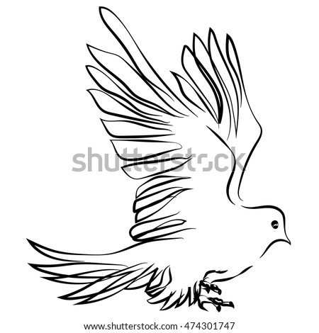 sketch shape Dove Bird Poultry beast icon cartoon design abstract illustration animal