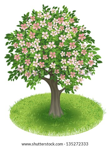 Spring Tree with blossoms in green field, illustration