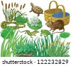 Swamp set - stock vector