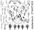 the biggest set of different hand drawn trees, winter trees,deciduous trees, conifers, old trees,trees with roots, hand drawn vector illustration - stock photo