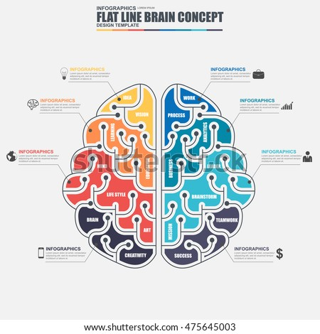 Thin line flat business brain infographic elements vector template. Can be used for workflow, business solution concept, brainstorming, education, creative process, diagram, chart, data visualization.